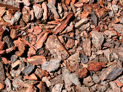Reviews for Bark Mulch
