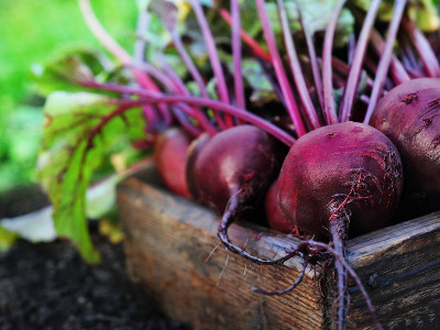Reviews for Beetroots