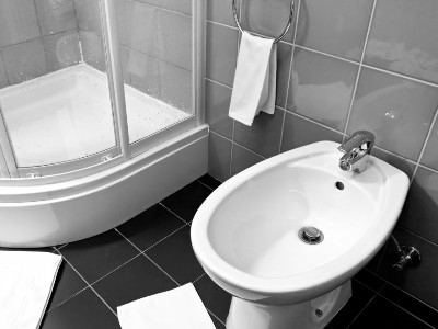 Reviews for Bidet Showers