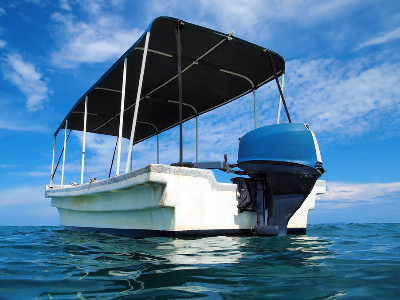 Reviews for Bimini Tops