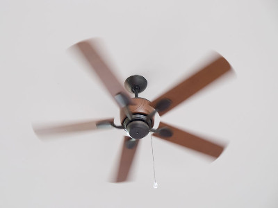 Reviews for Ceiling Fans