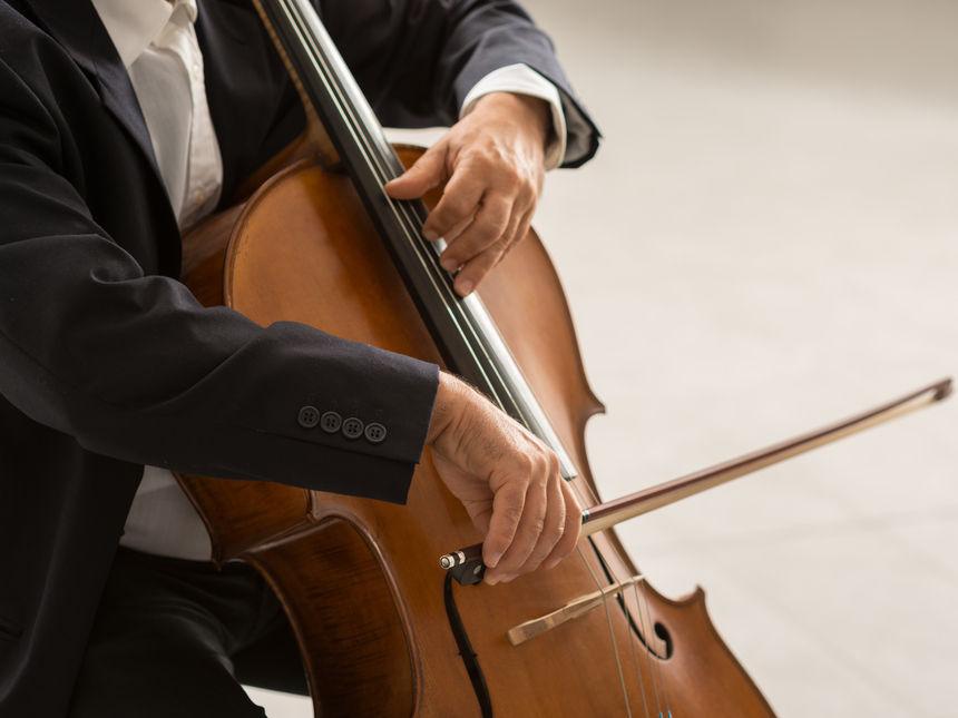 Reviews for Cello Rentals