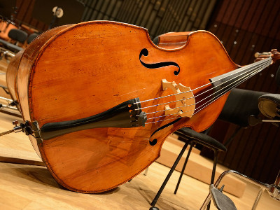 Reviews for Double Basses