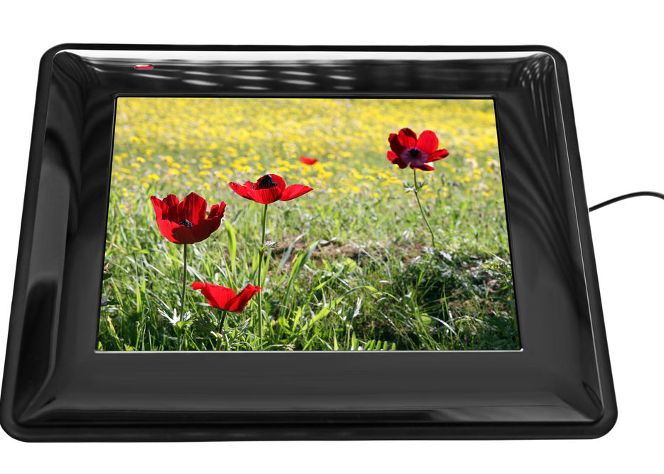 Reviews for Digital Photo Frames
