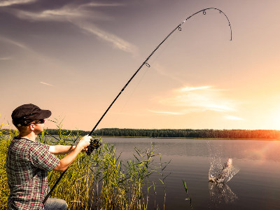 Reviews for Fishing Rods