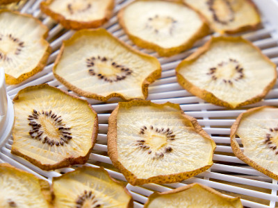 Reviews for Food Dehydrators