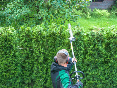 Reviews for Hedge Trimmers