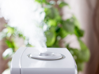 Reviews for Humidifiers