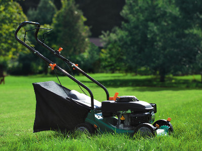 Reviews for Lawn Mowers