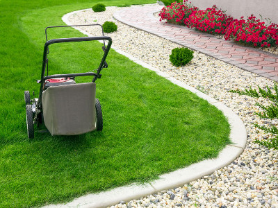 Reviews for Lawn Services