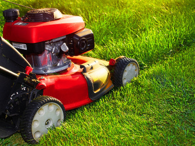 Reviews for Lawnmower Rentals