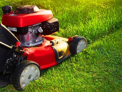 Lawnmower Rentals