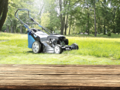 Reviews for Mower Decks