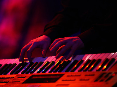 Reviews for Musical Keyboards
