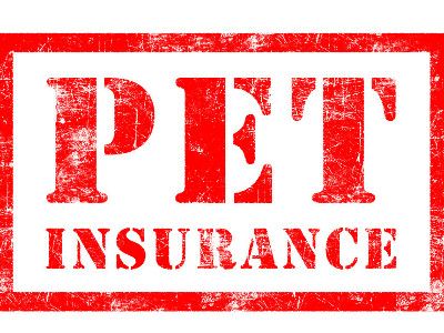 Reviews for Pet Insurance