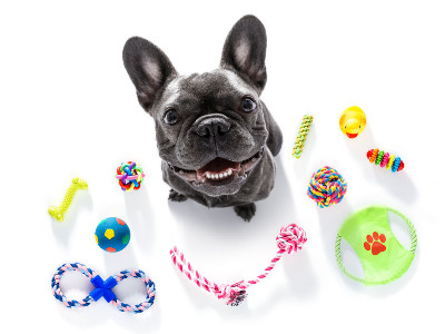 Reviews for Pet Toys