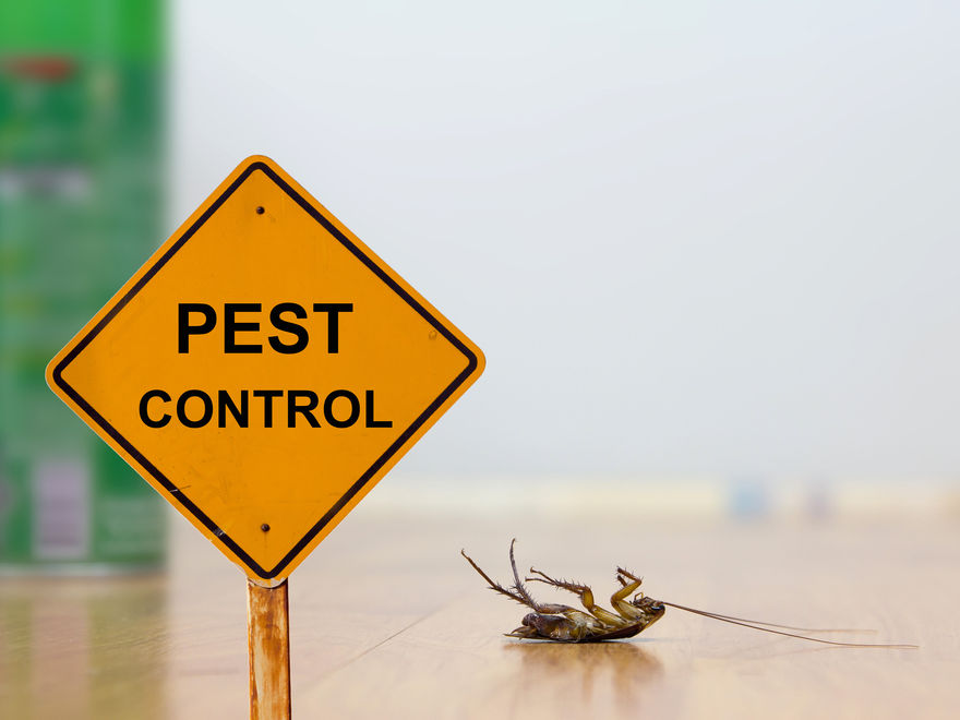 Pest Control Supplies