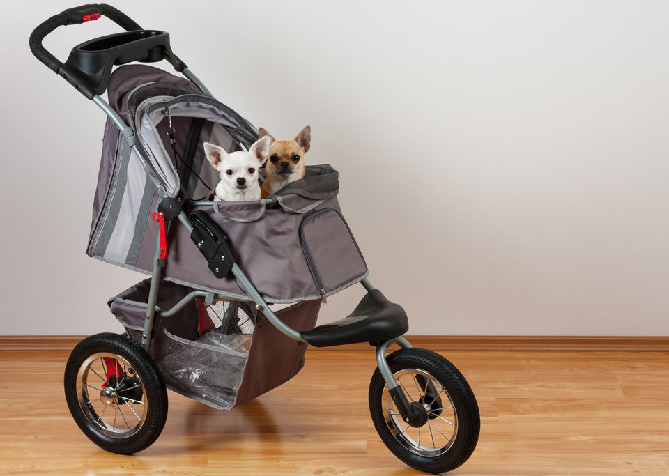 Reviews for Pet Strollers