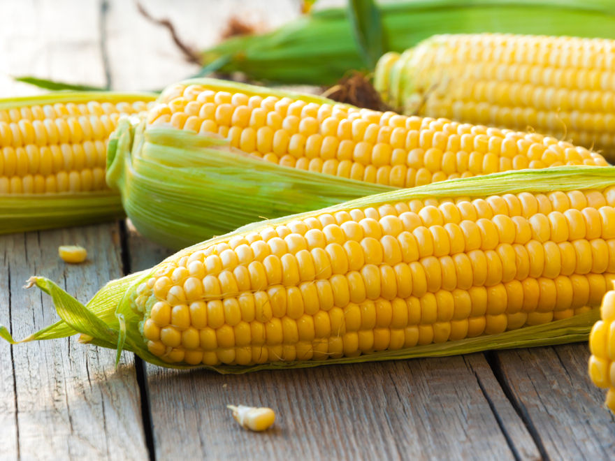 Reviews for Sweet Corn