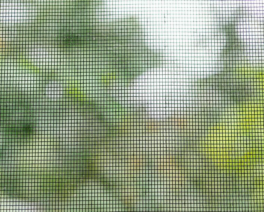 Screen Nets