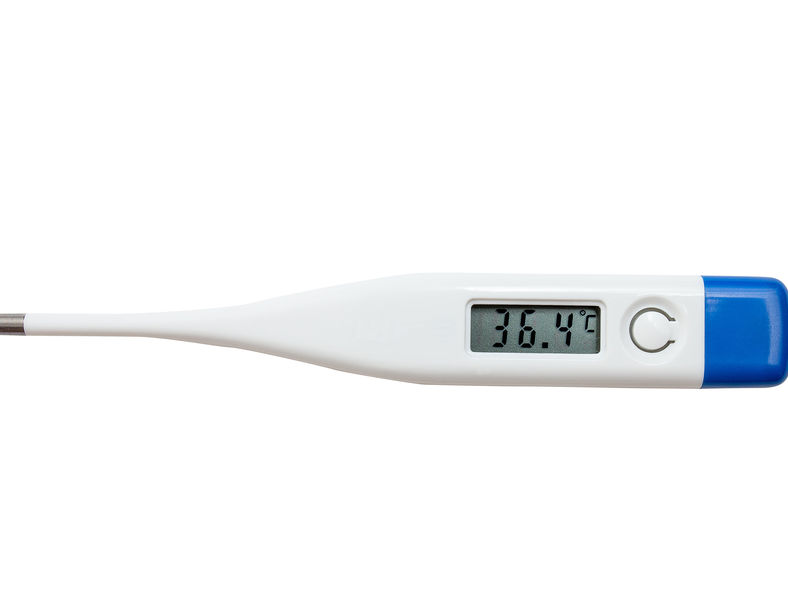 Reviews for Thermometers