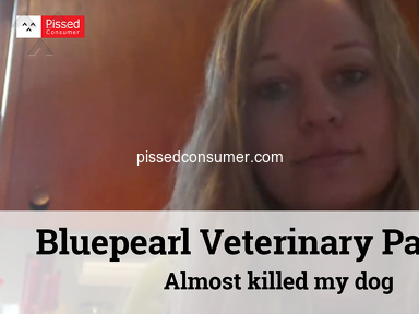 Bluepearl Veterinary Partners - Almost killed my dog