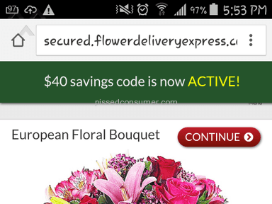 Flower Delivery Express Bouquet review 82609