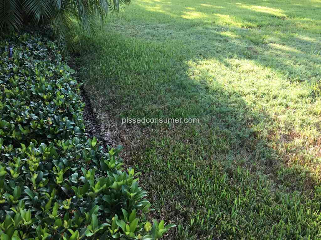 Trugreen lawn care professional sep 16 2017 pissed for Lawn care professionals