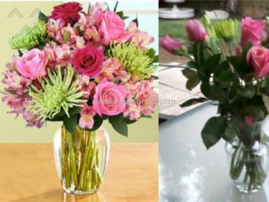 ProFlowers Bouquet review 7233