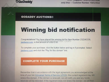 Godaddy - My highest bid then our domain is not my account