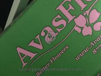 Avasflowers Arrangement review 192584