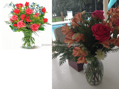 Flower Delivery Express Arrangement review 33381