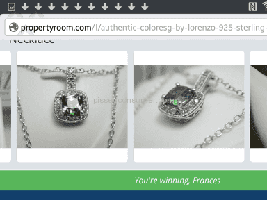 Propertyroom - Diamond Necklace Review from San Diego, California