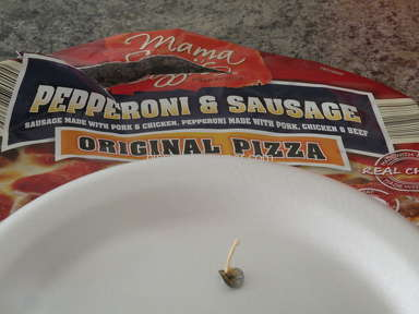 Aldi Grocery - Metal disc found in Mama Cozzi's sausage and pepperoni pizza