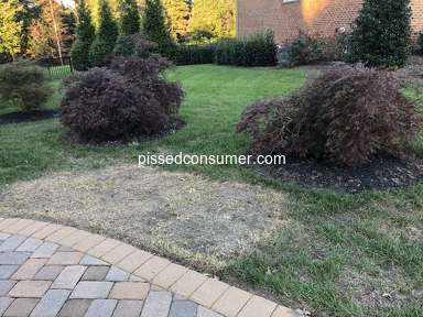 Trugreen Lawn Aeration Service review 341038