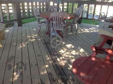 Behr Deckover Deck Paint review 310458
