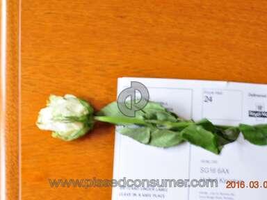 EFlorist Bouquet review 118943