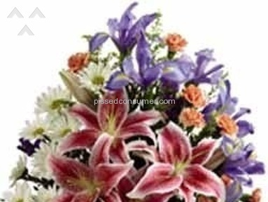 Wesley Berry Flowers Flowers / Florist review 93533