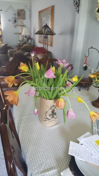Proflowers Flowers