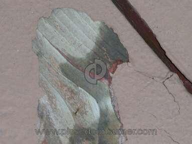Behr Deckover Deck Paint review 218438