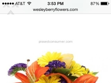 Wesley Berry Flowers Flowers review 87735