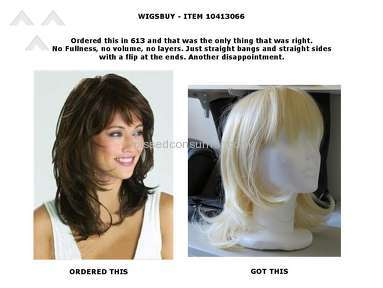 Wigsbuy Human Hair Wig review 139855