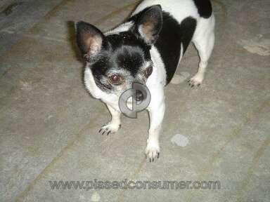 Petsmart Purina One Dog Food review 387680