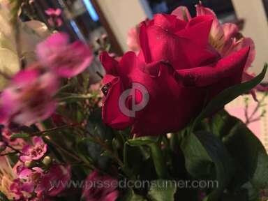 Avasflowers - Arrangement Review