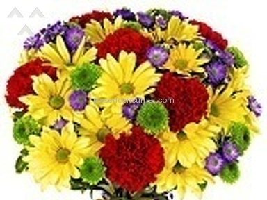 From You Flowers Flowers / Florist review 76523