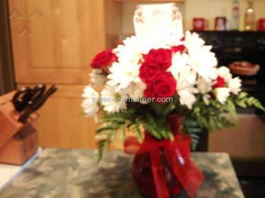Teleflora Teleflora's Red White And You Arrangement review 138067
