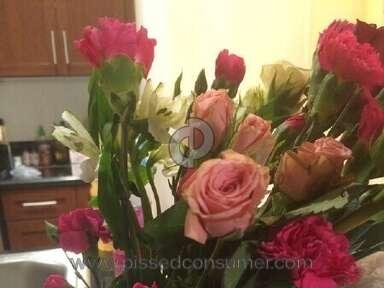 1800flowers Arrangement review 61753