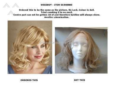 Wigsbuy Human Hair Wig review 139849
