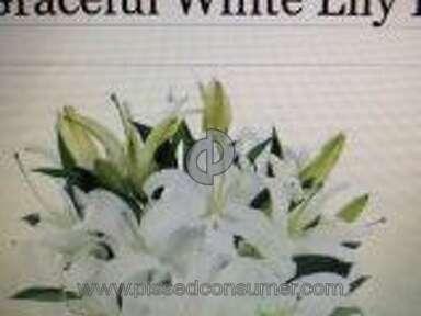 Avasflowers Arrangement review 118693