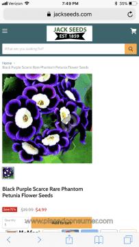 Jack Seeds Petunia Seeds